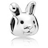 Remarkable Rabbit Charm